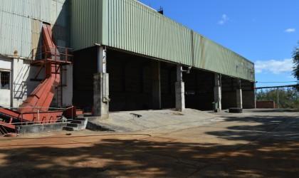 à louer - Locaux industriels - bambous